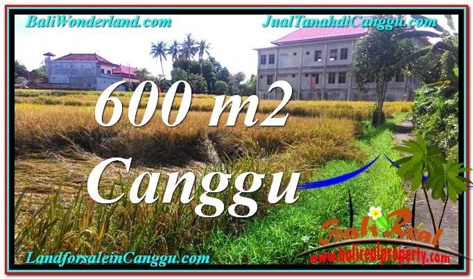 TANAH DIJUAL di CANGGU 600 m2 di Canggu Pererenan