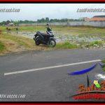JUAL MURAH TANAH di CANGGU BALI Untuk INVESTASI TJCG221