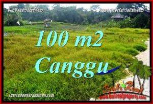 JUAL MURAH TANAH di CANGGU BALI 100 m2 VIEW SAWAH, LINGKUNGAN VILLA
