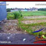 JUAL TANAH MURAH di CANGGU BALI Untuk INVESTASI TJCG230