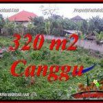 TANAH MURAH di CANGGU JUAL 320 m2 LINGKUNGAN VILLA