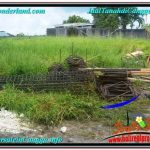 TANAH MURAH JUAL di CANGGU BALI 9 Are View sawah lingkungan villa